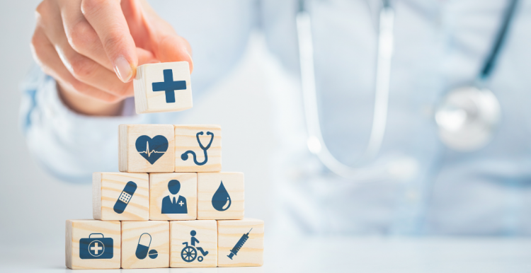local health services building blocks